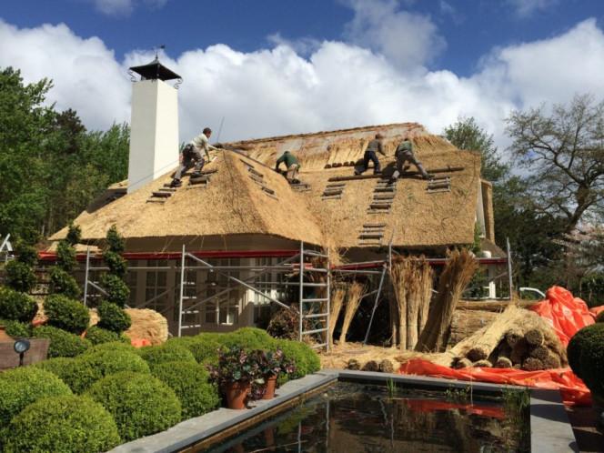 Een rieten dak onderhouden
